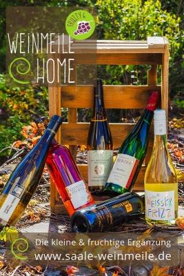 Saale Unstrut Wein - Probierpaket Saale Weinmeile at Home fruity 6