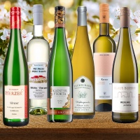 Saale Unstrut Wein - Probierpaket Jungweinprobe