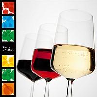 Saale Unstrut Wein - Probierpaket
