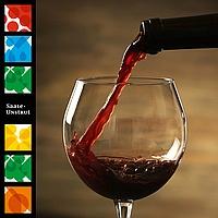 Saale Unstrut Wein - Probierpaket Rotwein