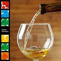 Saale Unstrut Wein - Probierpaket Weißwein trocken
