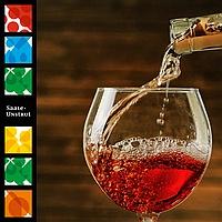 Saale Unstrut Wein - Probierpaket Roséwein