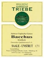 Bacchus DQW trocken 2020 - Weingut Hubertus Triebe